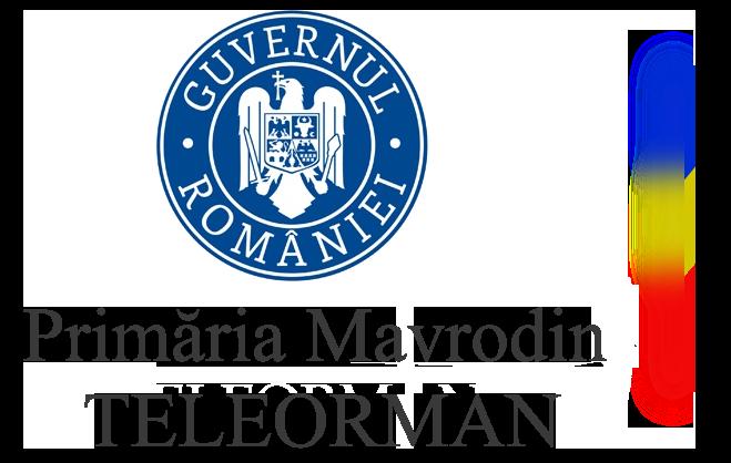 Primaria Mavrodin